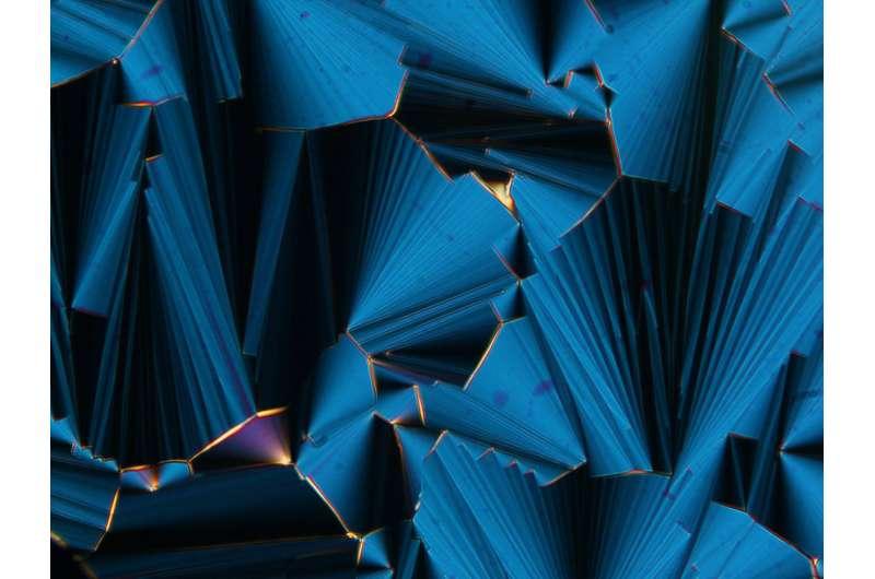 Liquid crystals and the origin of life