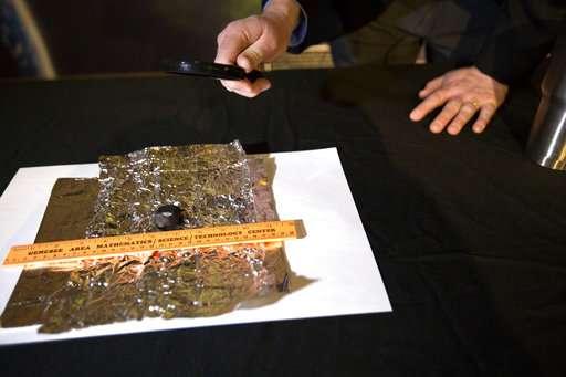 Meteorite hunters find first fragments of Michigan meteor