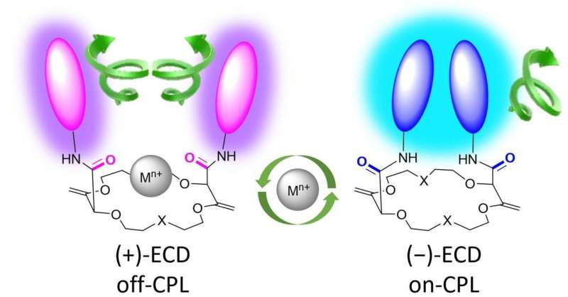 Molecular switch detects metals in the environment