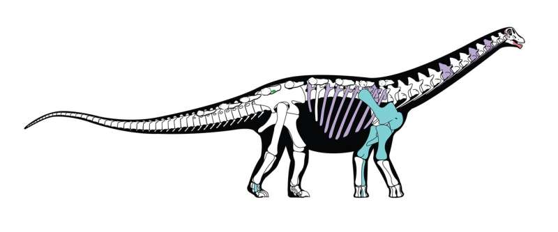 New Egyptian dinosaur reveals ancient link between Africa and Europe