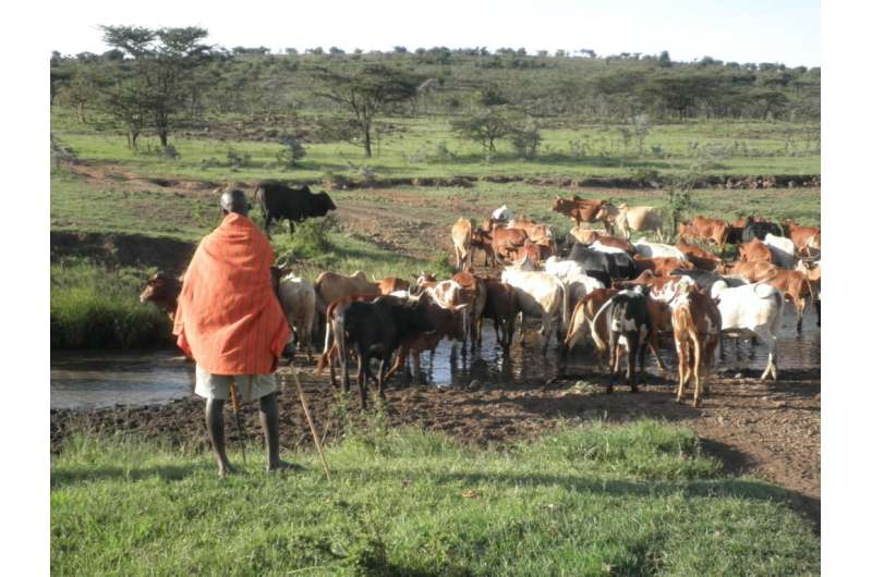 New model for evaluating rangeland systems launches