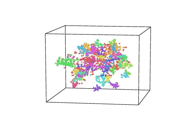 New software, HyperTools, transforms complex data into visualizable shapes