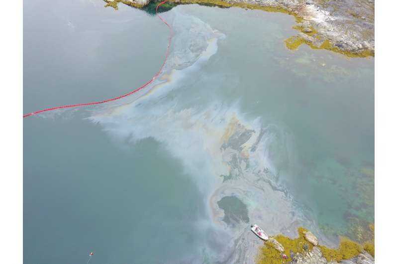 Oil-eating microbes are challenged in the Arctic