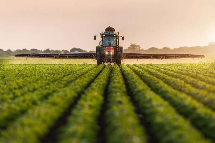 Organic agriculture is going mainstream, but not the way you think it is