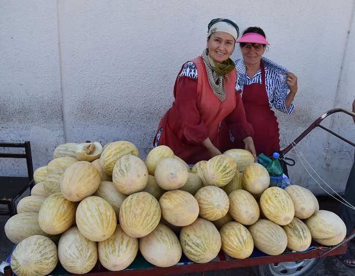 Origins and spread of Eurasian fruits traced to the ancient Silk Road