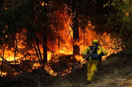 Report: Downed power lines sparked deadly California fires
