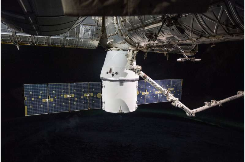Researcher to send cotton into space to improve its growth on Earth