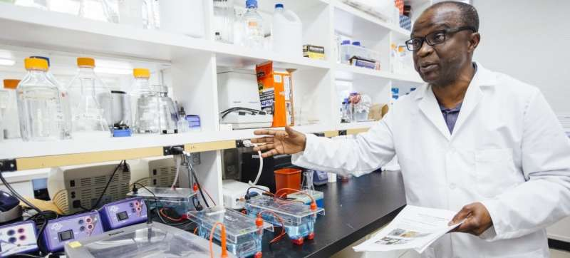 Research lab rides wave of growth in pulse crops