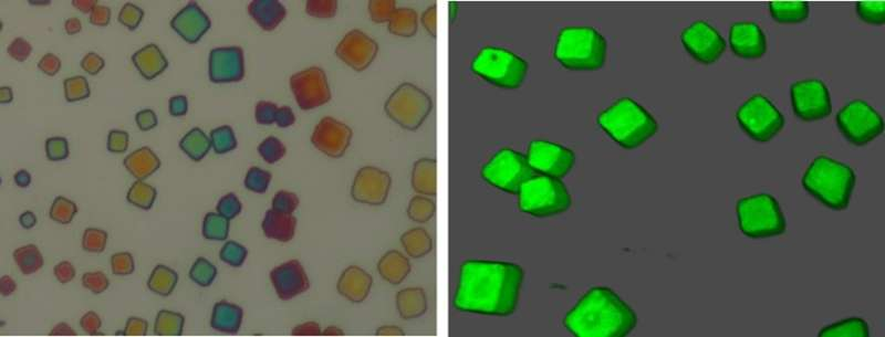 **Sandwich structure of nanocrystals as quantum light source