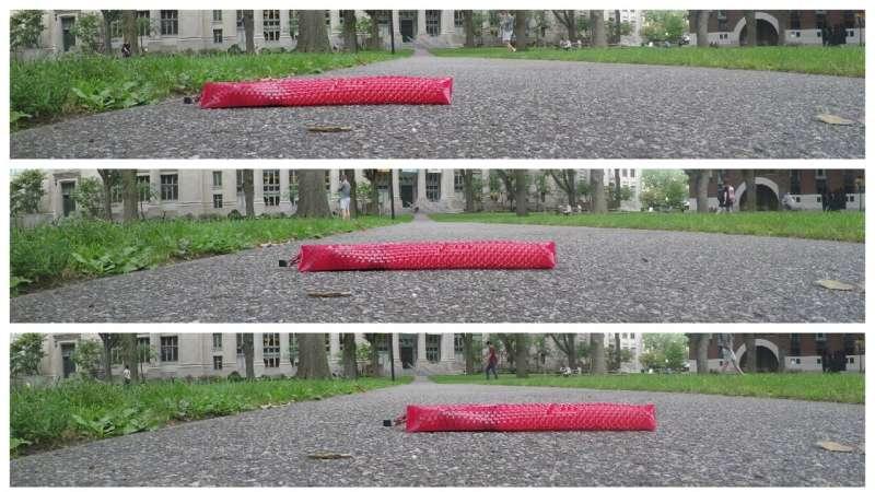 Snake-inspired robot uses kirigami to move