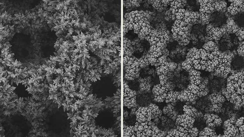 Technique doubles conversion of CO2 to plastic component