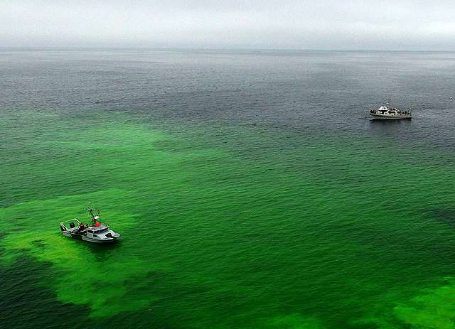 Testing an undersea robot that can detect and map oil spills