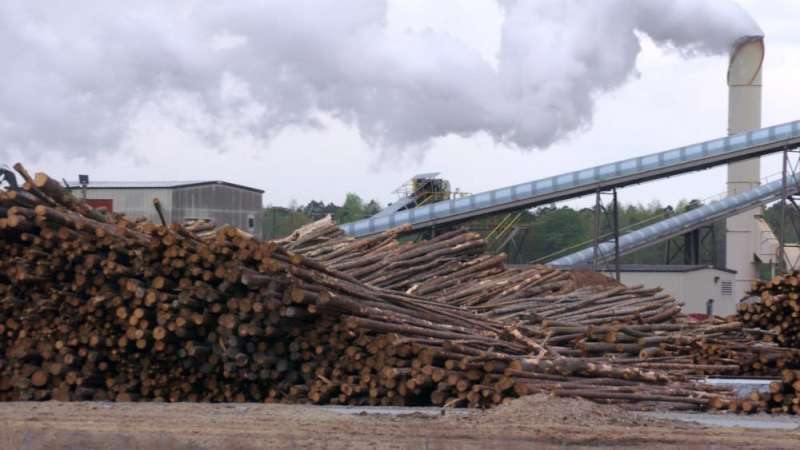 The EPA says burning wood to generate power is 'carbon-neutral.' Is that true?