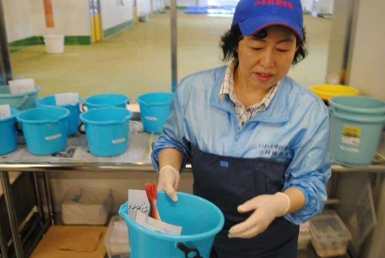The Fukushima disaster devastated a previously flourishing local agricultural sector