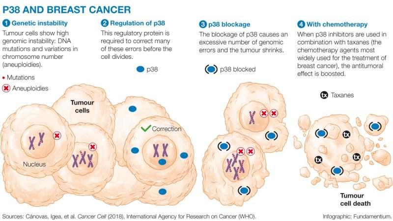 Tumor cells evade death through in extremis DNA repair