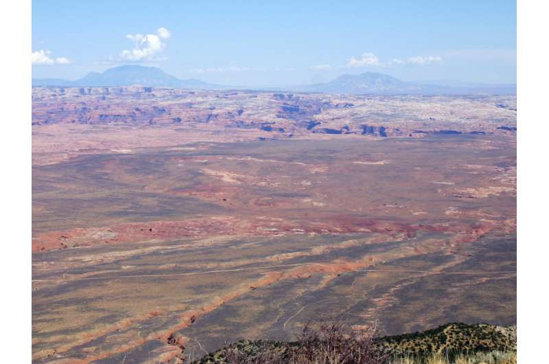 Utah's Grand Staircase-Escalante National Monument Home to Rich Bee Diversity