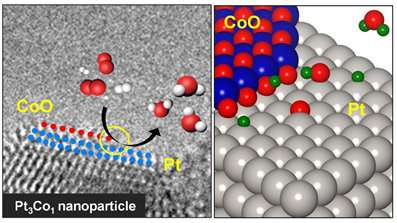 Visualizing chemical reactions on bimetal surfaces