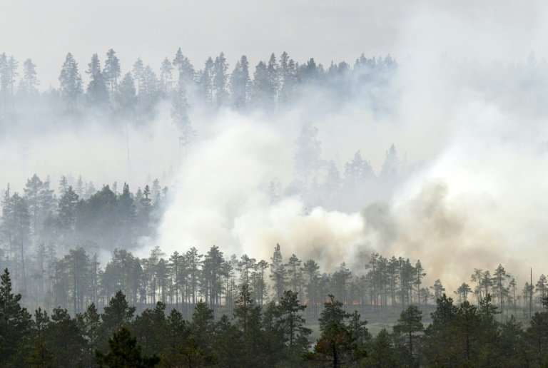 Wildfires in Sweden are finally easing after international efforts to bring them under control