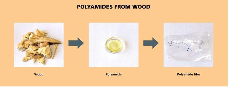 100 percent biobased transparent and thermally stable polyamide