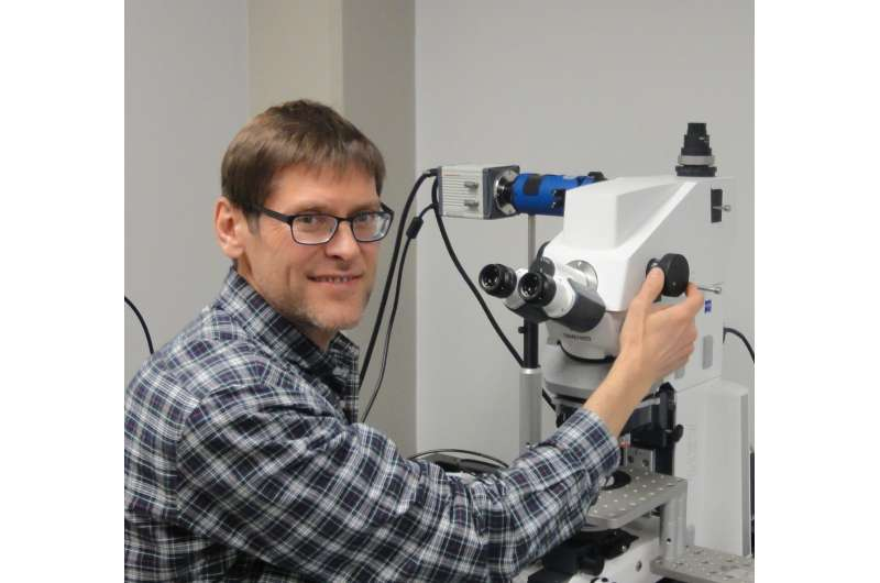 Research team helping better understand causes of muscular dystrophy