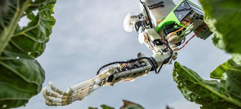 Scientists develop harvesting robots that could revolutionise farming practices
