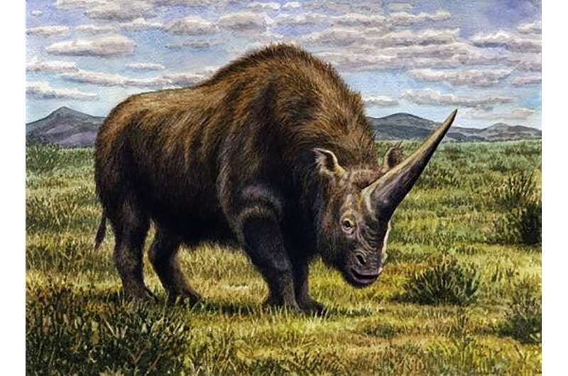 Climate change wiped out the 'Siberian unicorn'