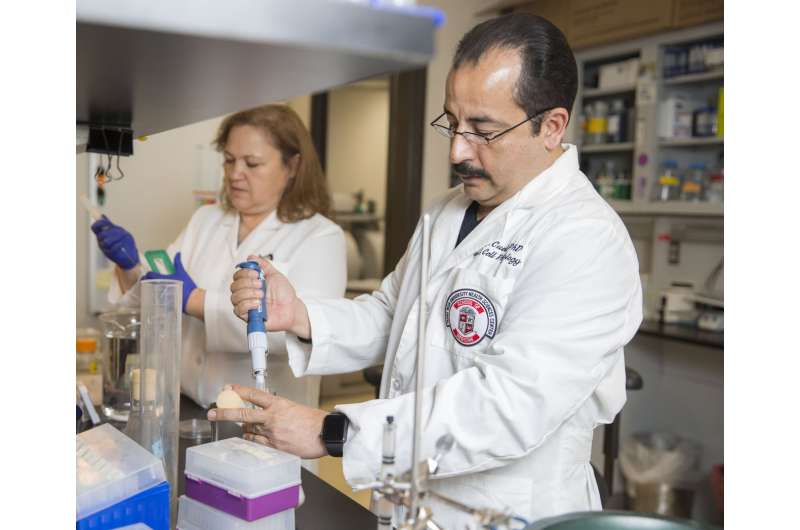Research team reverse way potassium channels work from bacteria to human