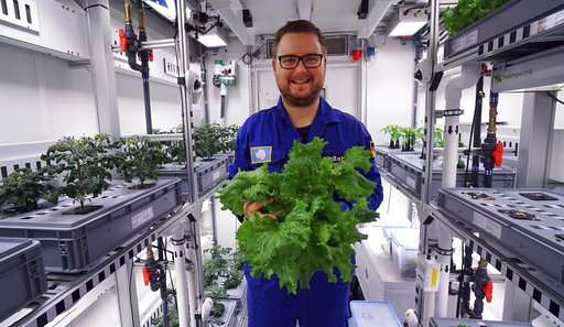 Scientists harvest 1st vegetables in Antarctic greenhouse