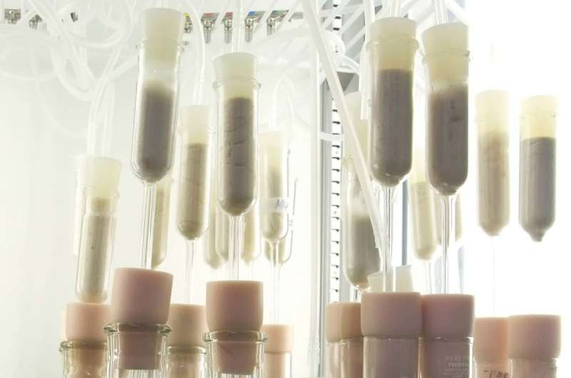 Scientists identify enzyme that could help accelerate biofuel production