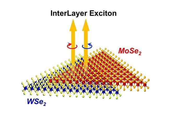 Researchers observe unique interlayer state in a bilayer heterostructure