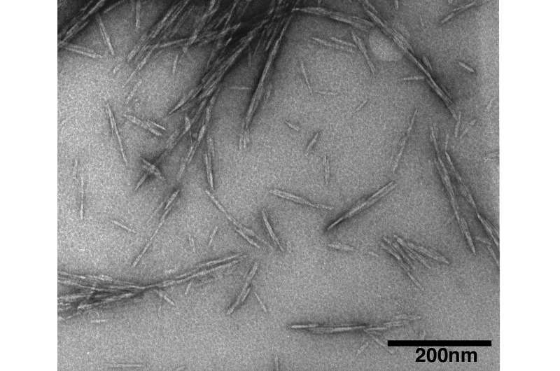 Researchers show microscopic wood nanocrystals make concrete stronger