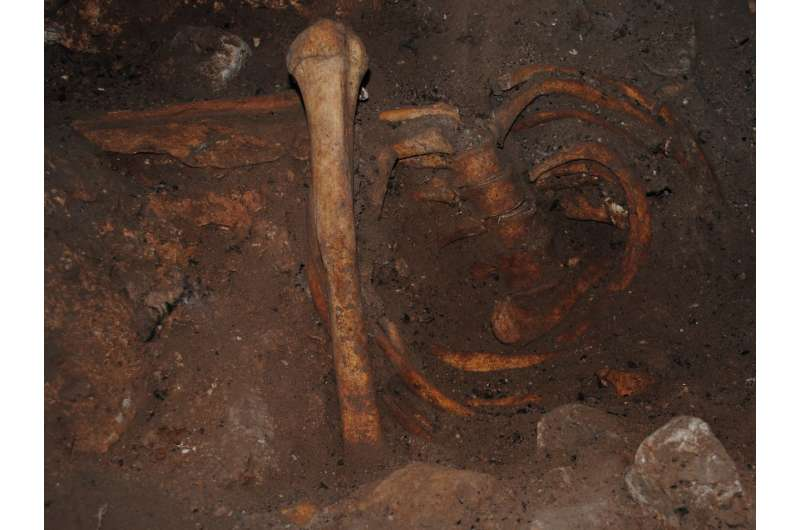 Scientists discover genomic ancestry of Stone Age North Africans from Morocco