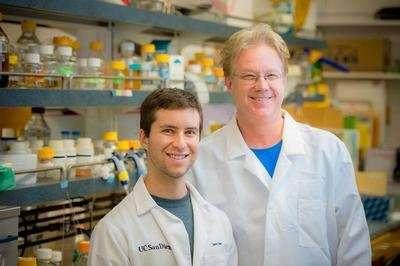 Researchers film bacteria using melee combat to steal antibiotic resistance genes
