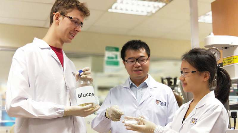 Research team pioneers faster, cheaper and greener way to produce amino acids from plant-based waste