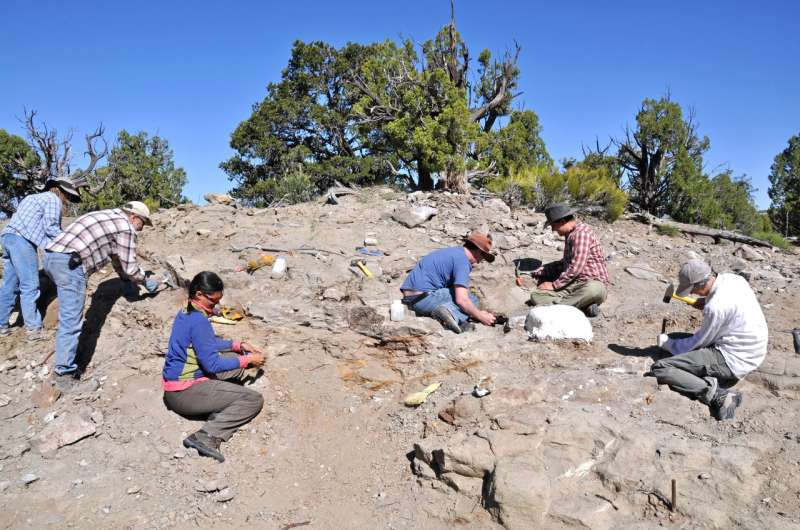 Newly discovered armored dinosaur from Utah reveals intriguing family history