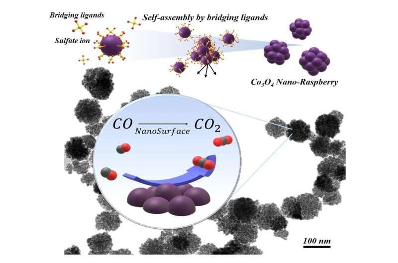 Researchers developed sustainable 'nano-raspberry' to neutralize poisonous carbon monoxide