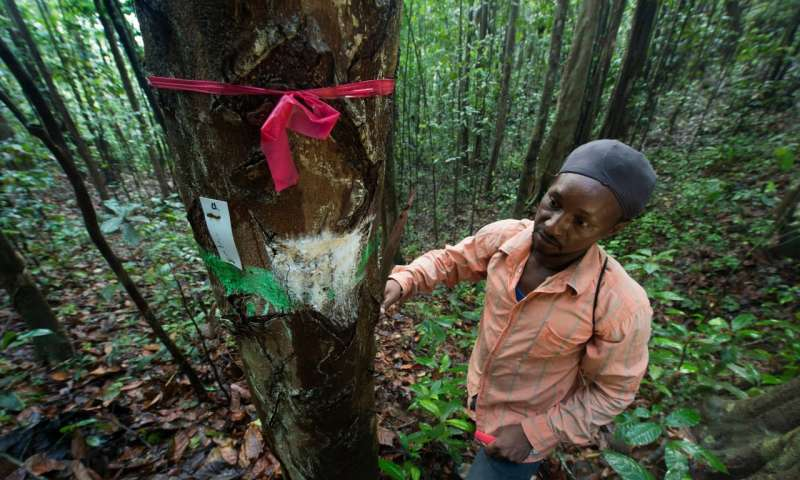 Being smart about illegal wildlife trade—why local communities matter