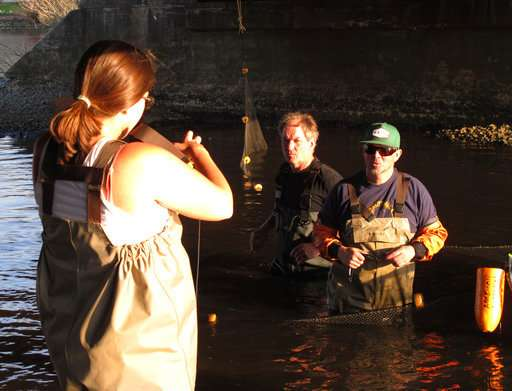 Blockages gone, fish back in post-Sandy projects in 6 states