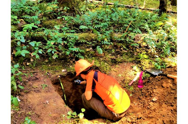 In soil carbon measurements, tools tell the tale
