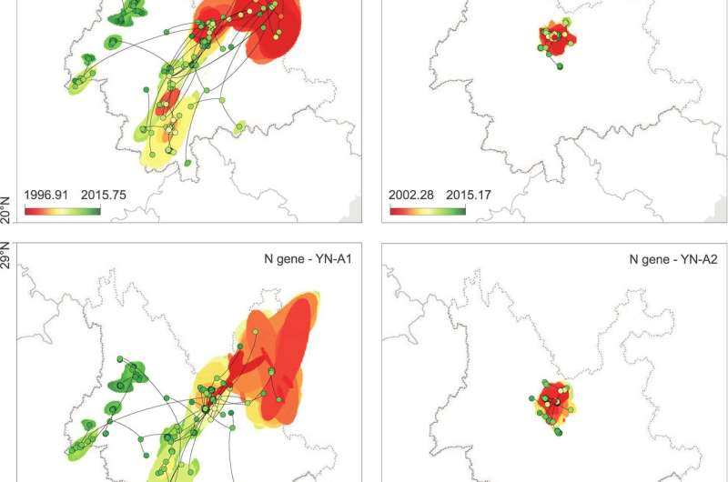 Interventions in dog populations could reduce rabies in rural China