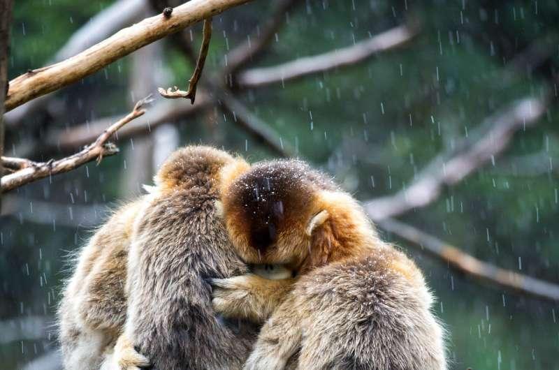 Protect key habitats, not just wilderness, to preserve species