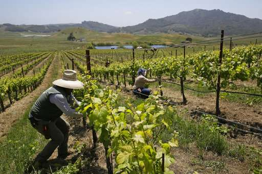The world's wine industry is adapting to climate change