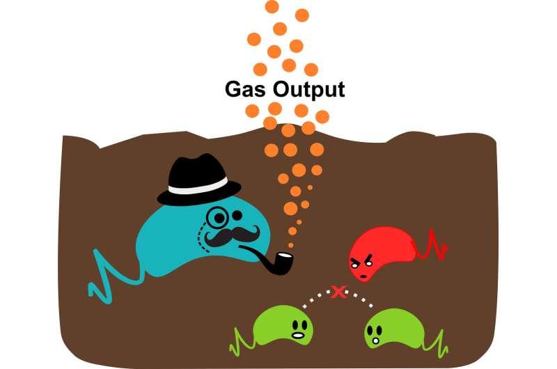 Two-stage gas sensor reports on soil dynamics