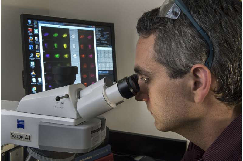 Breakthrough in cell imaging could have major impact in crime labs