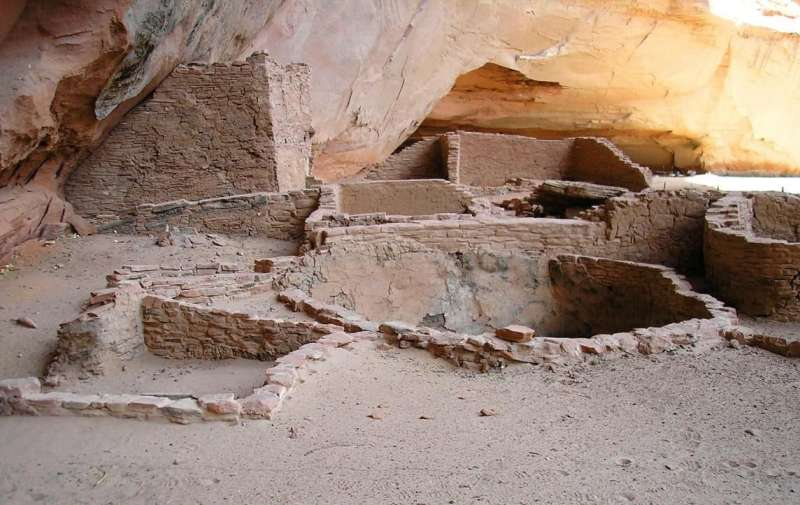 Research team discovers oldest known plant virus at ancient settlement