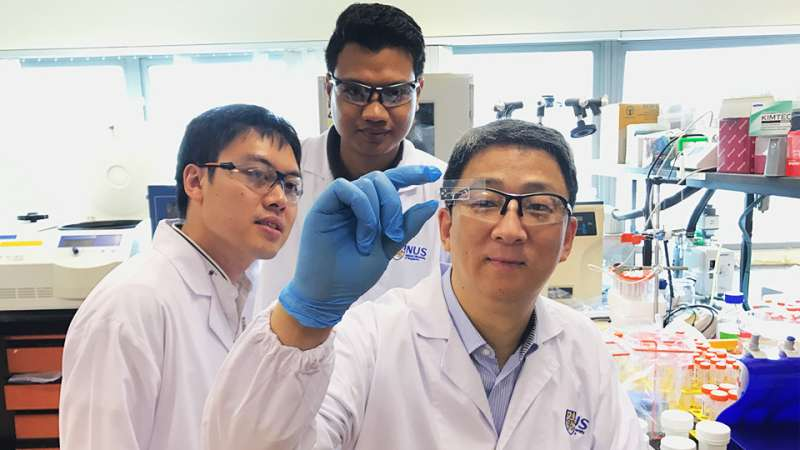 Scientists develop novel chip for fast and accurate disease detection at low cost