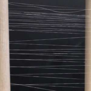 Engineering scientists use bacteria to create biosynthetic silk threads stronger and more tensile than before