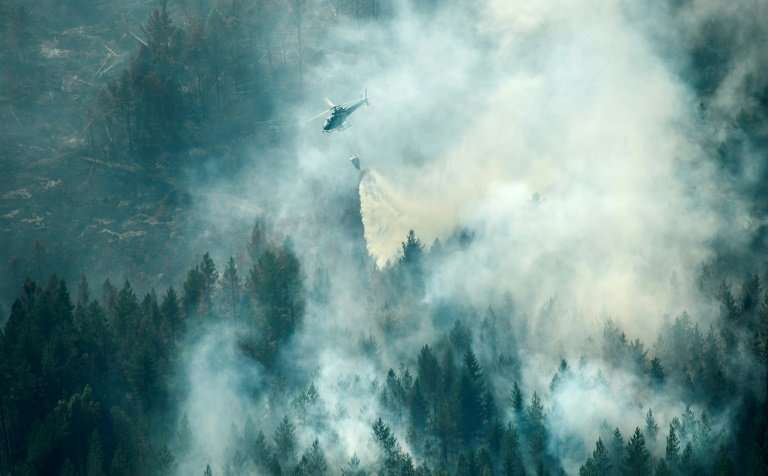 """Firefighters say they are putting out between """"20 and 30 wildfires per day"""" near Stockholm while other blazes are ragi"""