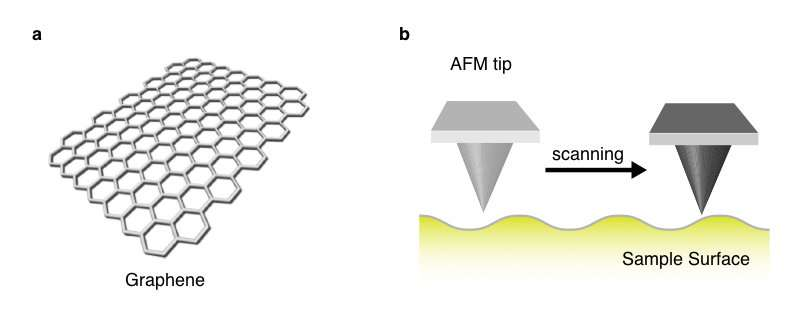 Scientists control molecular alignment on a graphene surface