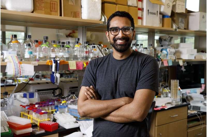 Scientists watch bacteria 'harpoon' DNA to speed their evolution